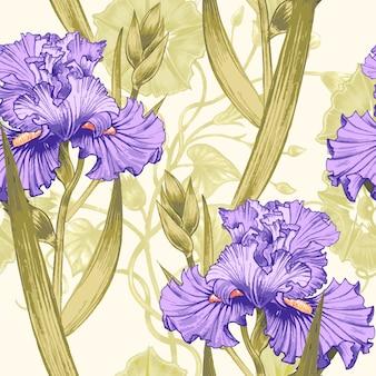 Modèle sans couture avec des iris de fleurs.