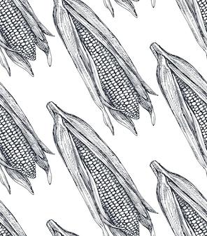 Modèle sans couture avec maïs esquissé illustration vectorielle dessinés à la main