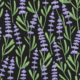 Modèle sans couture naturel avec des fleurs de lavande dessinés à la main