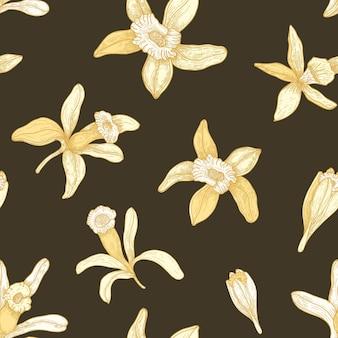 Modèle sans couture naturel avec des fleurs de vanille en fleurs sur fond noir.