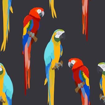 Modèle sans couture d'oiseau coloré macaw