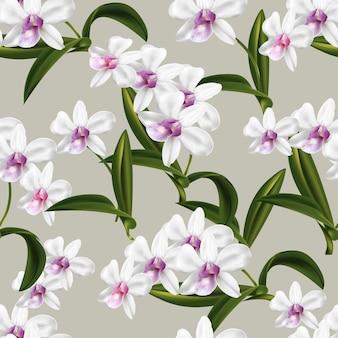 Modèle sans couture d'orchidée dendrobium