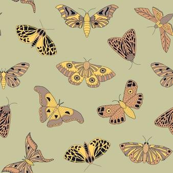 Modèle sans couture avec papillons et papillons dessinés à la main