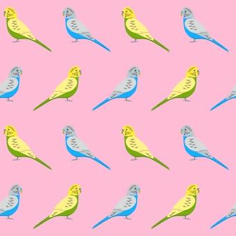 Modèle sans couture avec perroquets de perruche