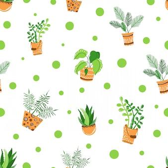Modèle sans couture de plantes d'intérieur