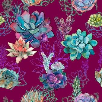 Modèle sans couture avec des plantes succulentes