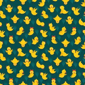 Modèle sans couture avec des poulets jaunes mignons