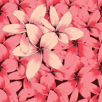 Modèle sans couture rose fleurs frangipanier abstrait