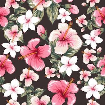 Modèle sans couture rose hibiscus, fleurs de frangipanier.