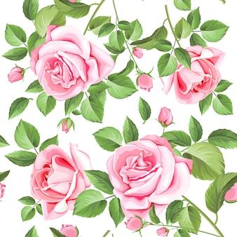 Modèle sans couture roses et feuilles élégantes