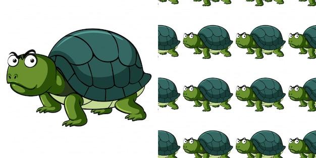 Modèle sans couture avec tortue en colère