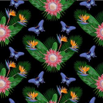 Modèle sans couture tropical avec protea