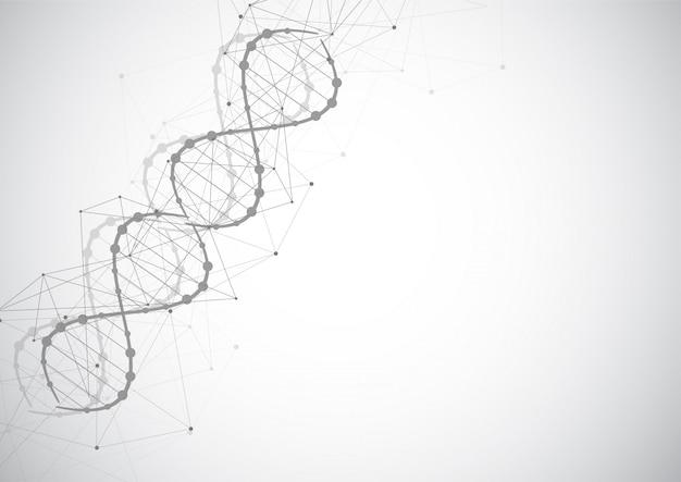 Modèle scientifique, papier peint ou bannière avec des molécules d'adn.