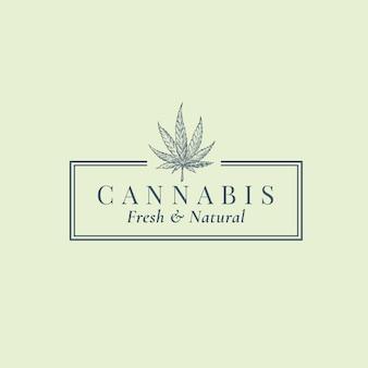 Modèle de signe, de symbole ou de logo abstrait de cannabis de qualité supérieure. sillhouette de croquis de feuille de chanvre vert dessiné à la main avec typographie rétro dans un cadre. emblème d'herbes médicinales de luxe vintage.