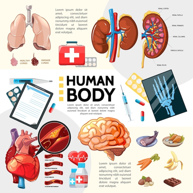 Modèle de soins de santé de dessin animé