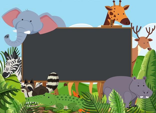 Modèle de tableau noir avec de nombreux animaux sauvages dans le domaine