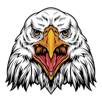 Modèle de tête d'aigle en colère coloré