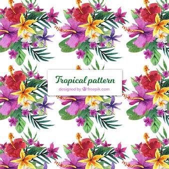 Modèle tropical aquarelle coloré