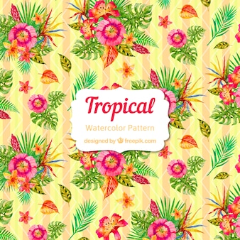 Modèle tropical aquarelle coloré