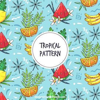 Modèle tropical dessiné main coloré