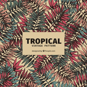 Modèle tropical élégant avec style vintage