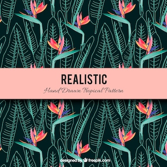 Modèle tropical réaliste dessiné à la main