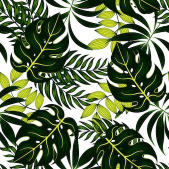 Modèle tropical sans couture d'été avec des plantes et des feuilles lumineuses sur fond blanc