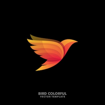 Modèle de vecteur illustration oiseaux concept designs