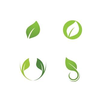 Modèle vectoriel frais de logo de plante verte de feuille