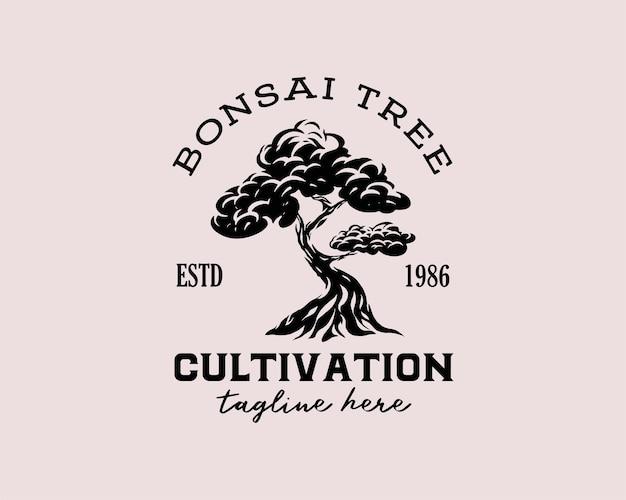 Modèles de conception de logo d'emblème de silhouette d'arbre de logo de médias de plantation d'arbre noir