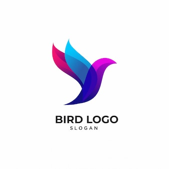 Modèles de logo animaux oiseaux colorés