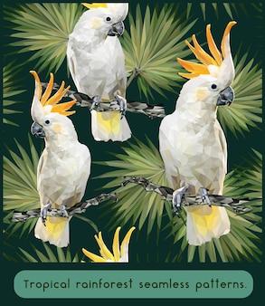 Modèles sans couture polygonaux de la forêt tropicale amazonienne avec des oiseaux cacatoès.
