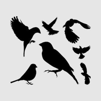 Moineau, oiseau, aigle, albatros, silhouette, ensemble, logo, icône, vecteur, conception, inspiration