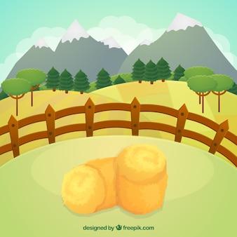 Montagnes à la prairie