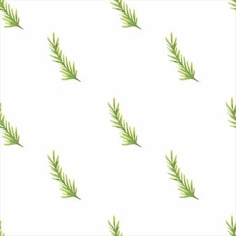 Motif aquarelle avec des branches de conifères vertes sur fond blanc