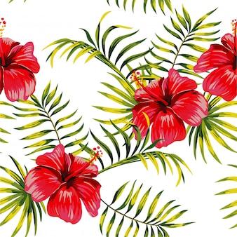 Motif de dessin d'hibiscus