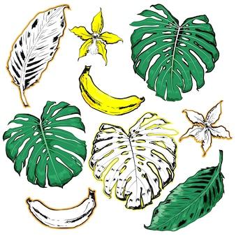 Motif dessiné avec le vecteur de feuilles tropicales et palmiers dessinés à la main
