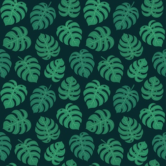 Motif feuille monstera
