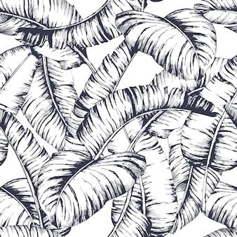 Motif de feuilles de bananier sans couture pour textile de mode, illustration vectorielle de ligne noire plante.