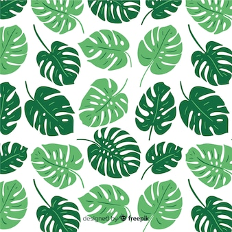 Motif de feuilles de monstera dessiné à la main