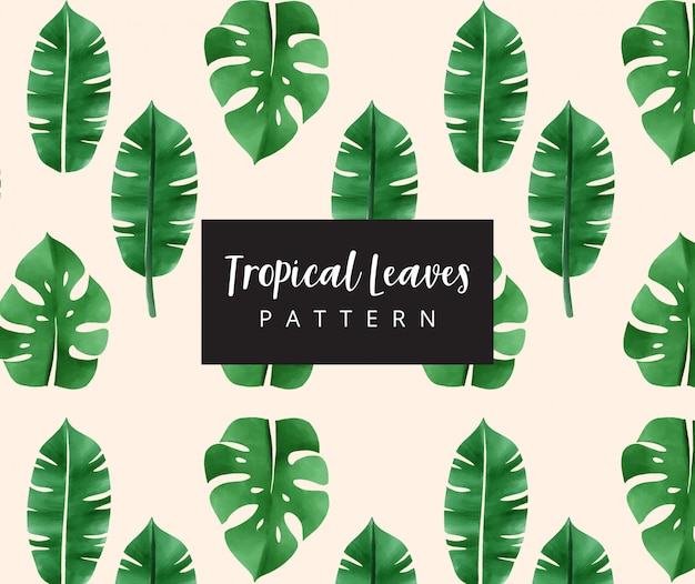 Motif feuilles tropicales