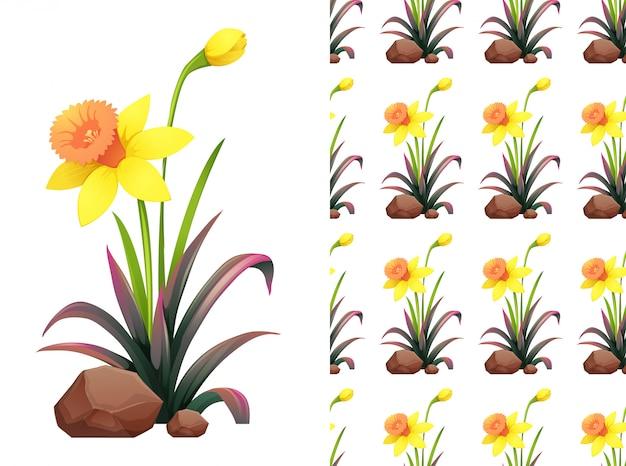 Motif fleurs jonquilles jaunes