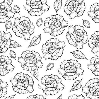 Motif de fleurs de pivoine de jardin. illustration de contour
