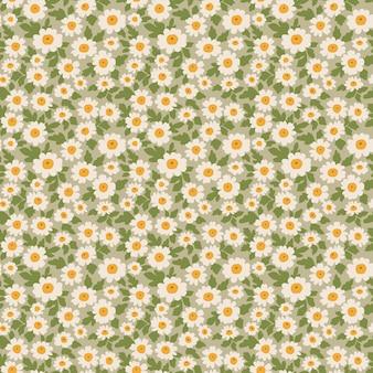 Motif floral mignon impression transparente fleurs de marguerite blanche fond vert