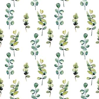 Motif floral sans couture avec des branches d'eucalyptus aquarelles