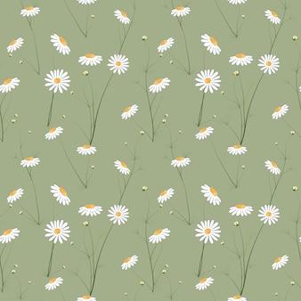 Motif floral sans couture avec fleur de cosmos dessinés à la main