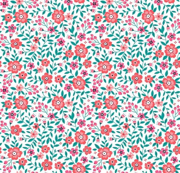 Motif floral sans couture pour la conception. petites fleurs rouges.
