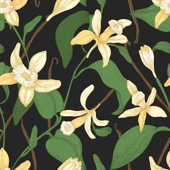 Motif floral sans couture avec vanille, feuilles, fleurs épanouies et fruits ou gousses sur fond noir