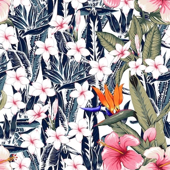 Motif floral sans soudure hibiscus, abstrait de fleurs de frangipanier.