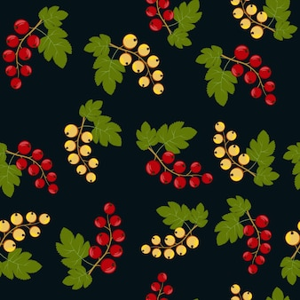 Motif de fruits de baies de cassis, illustration vectorielle de couleur sur fond noir.
